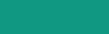 retina-logofedera